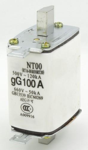NT00 100A blade ceramic fuse