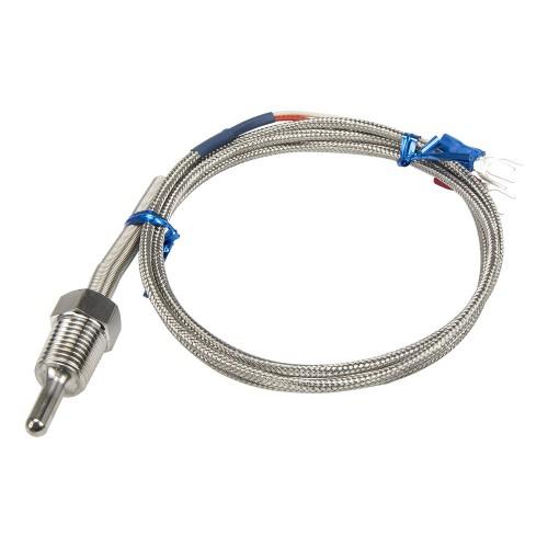 FTARP09-PT100-P2L30M1 PT1/4